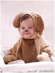 Puppy3